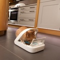 SureFeed Microchip Pet Feeder 4