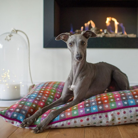 Luxury Pure Wool Dog Bed - Grey Multispot 2