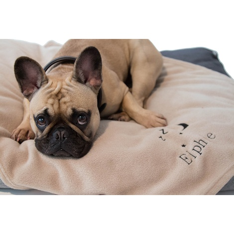 Personalised Cream Snooze Pet Blanket - Classic font 2