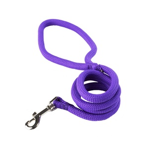 Braided Dog Lead – Pansy Purple