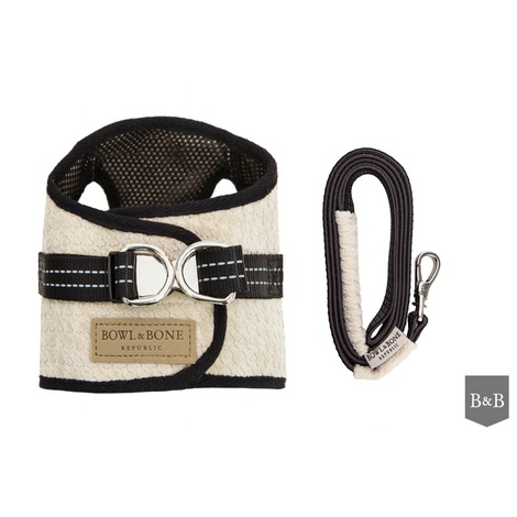 Soho Harness & Lead Set - Cream