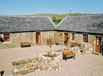 Chicken Coop View Cott