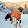 Climate Changer Fleece Jacket - Burnt Orange 2