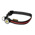 Spotlight LED Dog Collar - Red 2