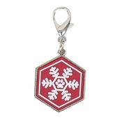Pet Brands - Christmas Pet Collar Charm – Red