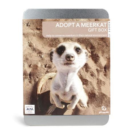 Adopt A Meerkat Gift Box