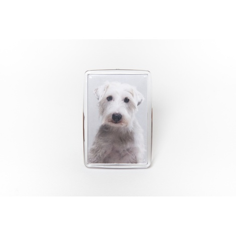 Personalised Pet Magnet