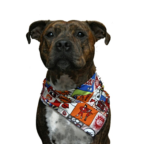 Cartoon Dog Bandana 4