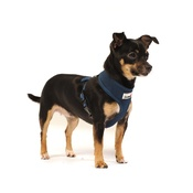 Doodlebone - Airmesh Dog Harness – Navy