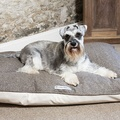 Herringbone Tweed Pillow Dog Bed 2