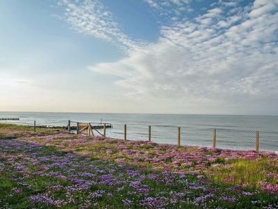 Beach View, Norfolk, Walcott