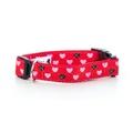 """Cupid Love Dog Collar 1"""" Width"""