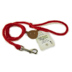 Puppy Slip lead -  Dartmoor Sunset Red
