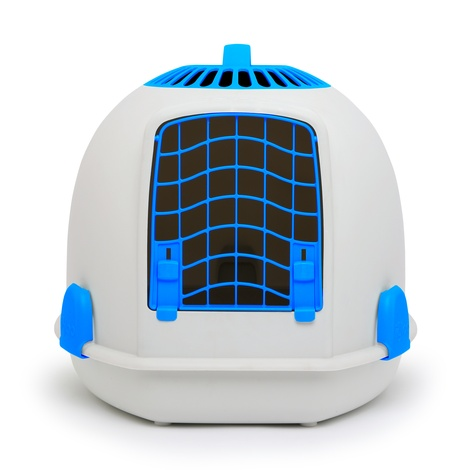 'The Igloo' for Cats - Alaskan Blue