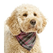 Pet Pooch Boutique - Pink Tartan Dog Bandana