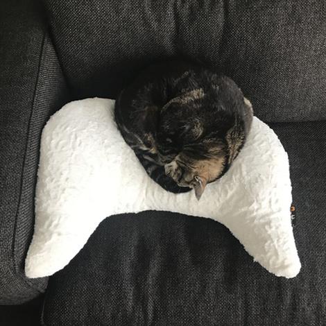 Joy Naboa Pet Pillow 5