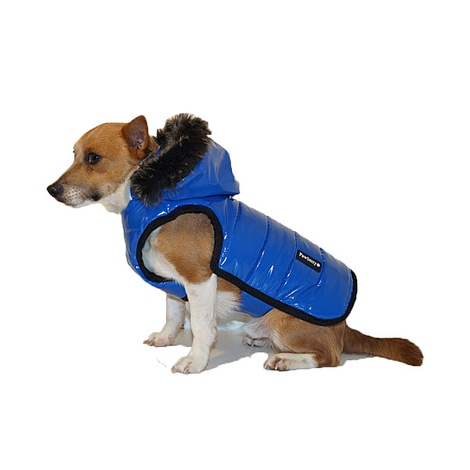 Brighton Bubble Hoodie Dog Coat - Blue