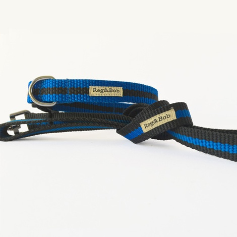Blue Dog Lead 2