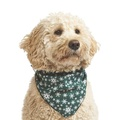 Mini Snowflake Dog Bandana – Green