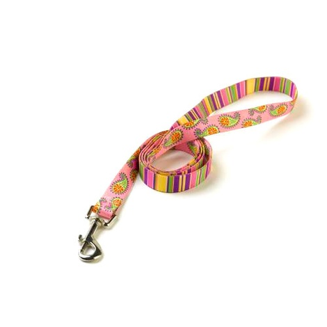 Pink Stripes Paisley Lead