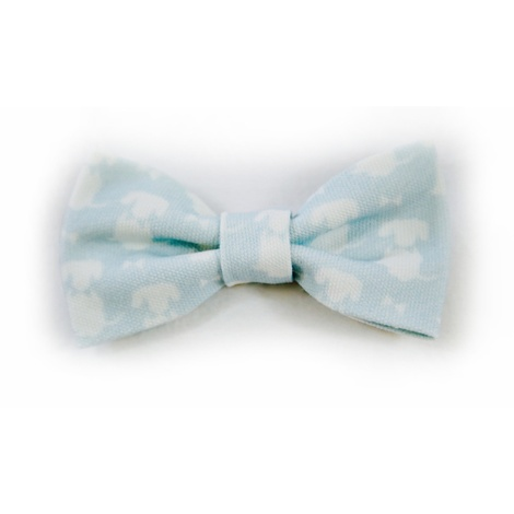 Teddy Maximus Duck Egg Dog Bow Tie