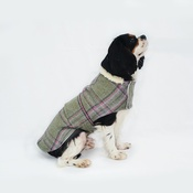 Minkeys Tweed - Beau Tweed Dog Coat