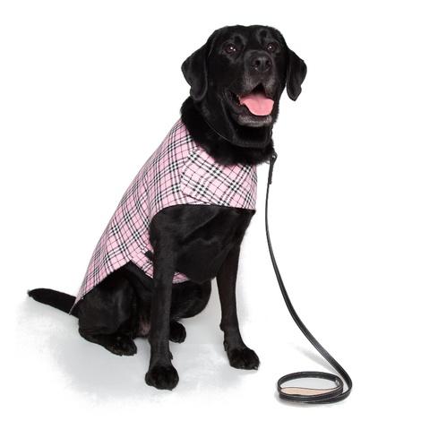 Personalised Pink Check Dog Coat 7