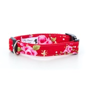 "Pet Pooch Boutique - Red Vintage Dog Collar 1"" Width"
