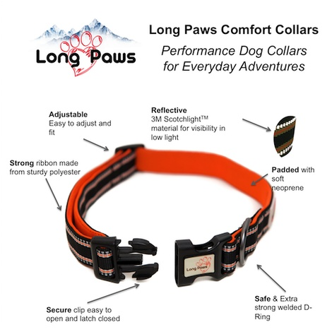 Comfort Padded Dog Collar – Black 2