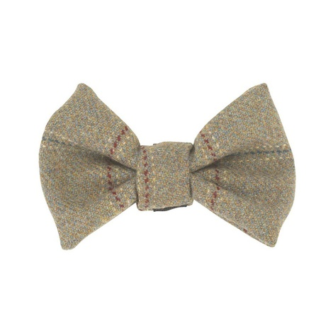 Digby Bow Wow Dog Bow Tie