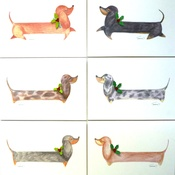 Dachshund Design  - Christmas Daxy Pack of 6