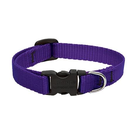 "1"" Width Purple Lupine Dog Collar"