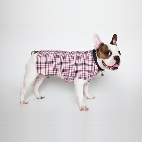 Personalised Pink Check Dog Coat 6