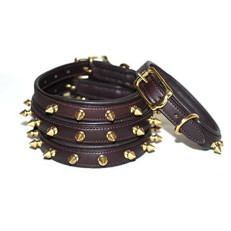 Brass Studs Leather Dog Collar - Brown