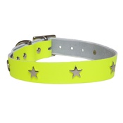 Creature Clothes - Galaxy Dog Collar - Yellow, Nickel Stars