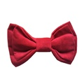 Fuchsia Velvet Dog Bow Tie