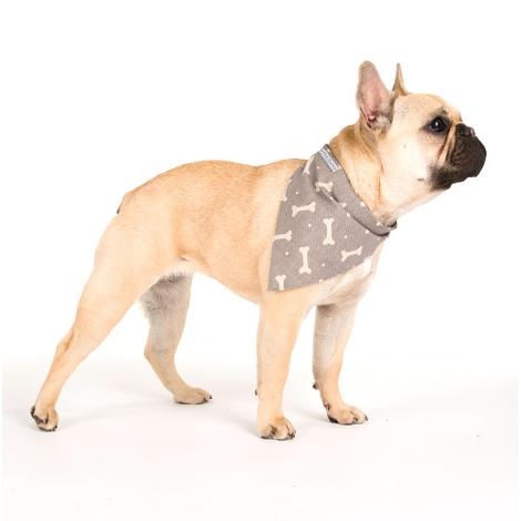 Mushroom Bone Linen Dog Neckerchief
