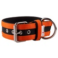 Juicy Strip Dog Collar - Orange