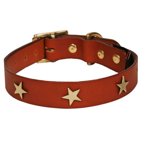 Classic Leather Dog Collar - Tan with Stars 2