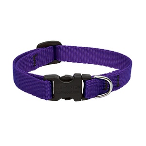 Purple Lupine Dog Collar