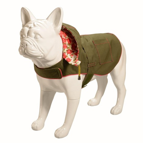 Hampstead Dog Hoodie – Olive & Summer Rose