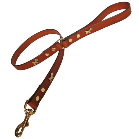 Tan Brass Dogs Classic Leather Dog Lead