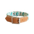 Green Geo Dog Collar 2