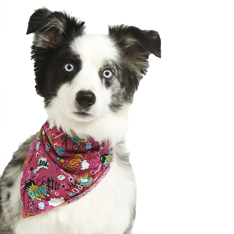 Pink Pow Dog Bandana