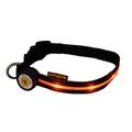 Spotlight LED Dog Collar - Red