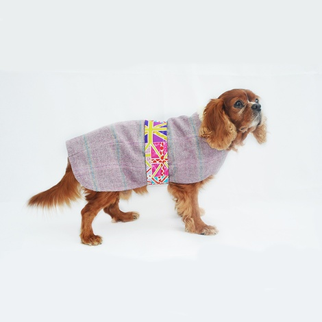 Sasha Tweed Dog Coat