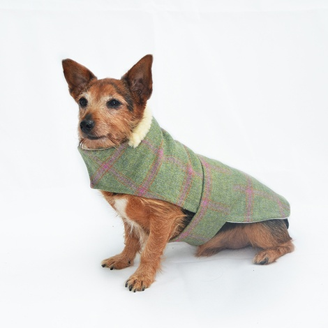 Raspberry Tweed Dog Coat