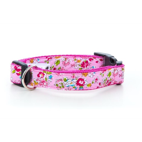 Pepper Dog Collar