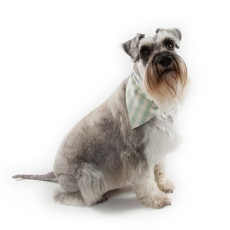 Mint Check Cotton Dog Neckerchief 3