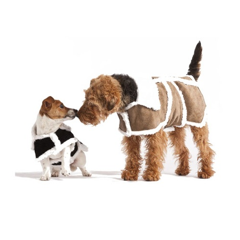 Brown Sherpa Leather Dog Coat